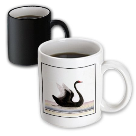 3dRose Framed Beautiful Art Deco Black Swan, Magic Transforming Mug, 11oz