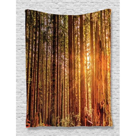 United States Tapestry, Tall Trees Red Woods Forest Humboldt California Sequoia Picture, Wall Hanging for Bedroom Living Room Dorm Decor, Orange Dark Brown Green, by