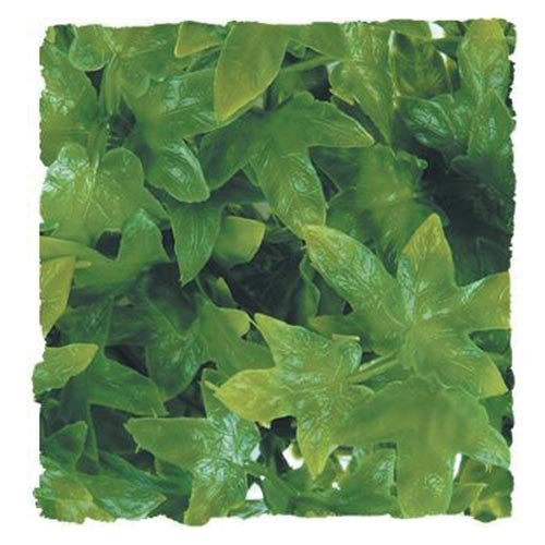 Naturalistic Bush Plant Australian Maple, Large, Provides natural cover By Zoo Med by