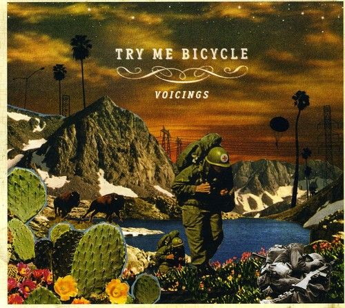 Try Me Bicycle - Voicings [CD]
