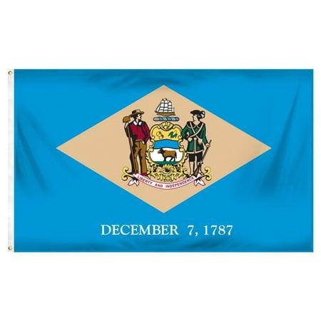 Delaware 3ft x 5ft Printed Polyester Flag - Halloween Store Delaware