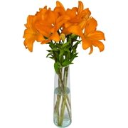 Arabella Bouquet of 6 Fresh Cut Orange Lilies with a Free Glass Vase