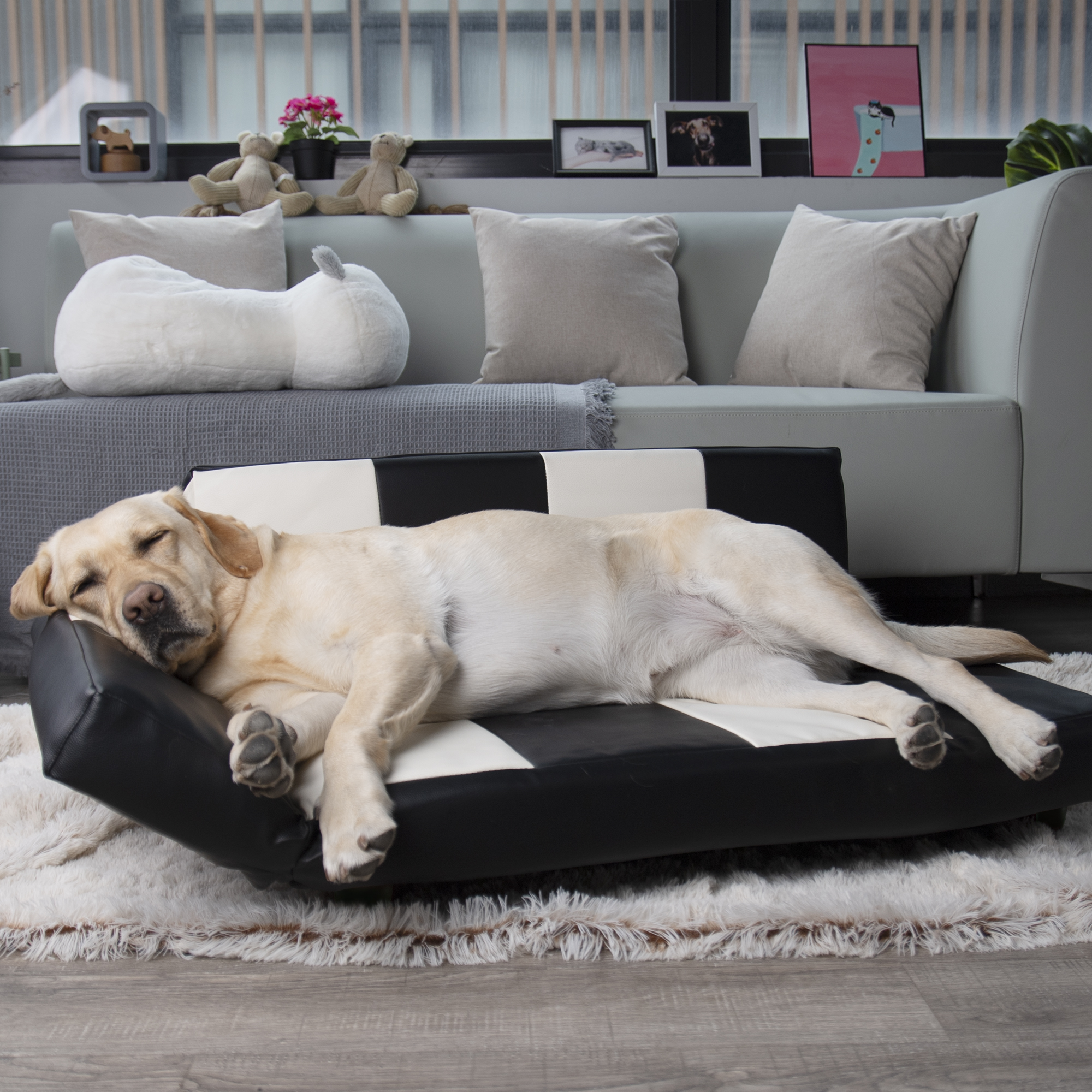Ada Dog Sofa Deluxe Scratch Resistant And Ultra Strong Structure Dog Bed Walmart Com Walmart Com