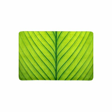 MKHERT Funny Fresh Plant Green Leaf Wavy Striped Texture Doormat Rug Home Decor Floor Mat Bath Mat 23.6x15.7 -