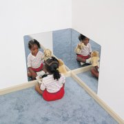Whitney Brothers 24'' H x 24'' W Corner Mirror