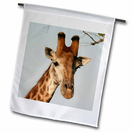 3dRose South African Giraffe head face sky background - Garden Flag, 12 by 18-inch ()