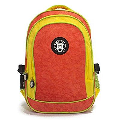 bigme small kids backpack lion, multi-colored, one size