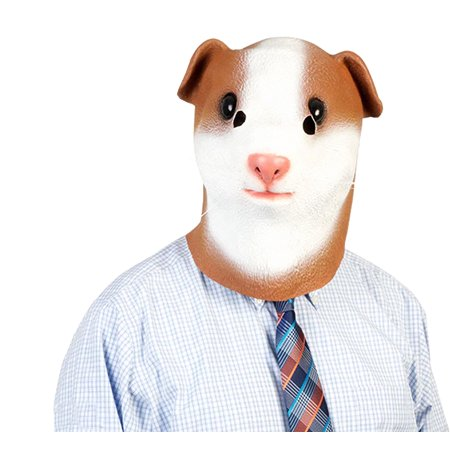 Guinea Pig Adult Costume Mask - Cute Halloween Costumes For Guinea Pigs