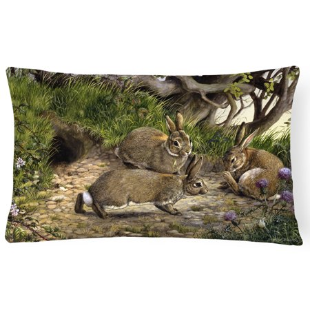 Rabbits and the Rabbit Hole Fabric Decorative Pillow BDBA0136PW1216 - Walmart.com