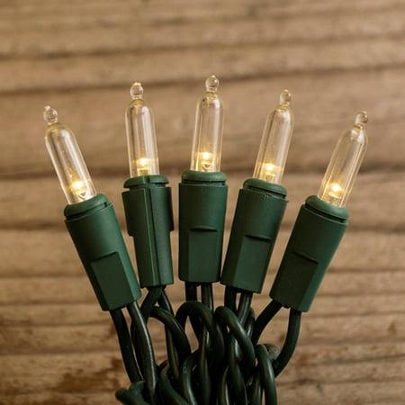 Electric Plug In String Lights Led String Lights 50 Mini