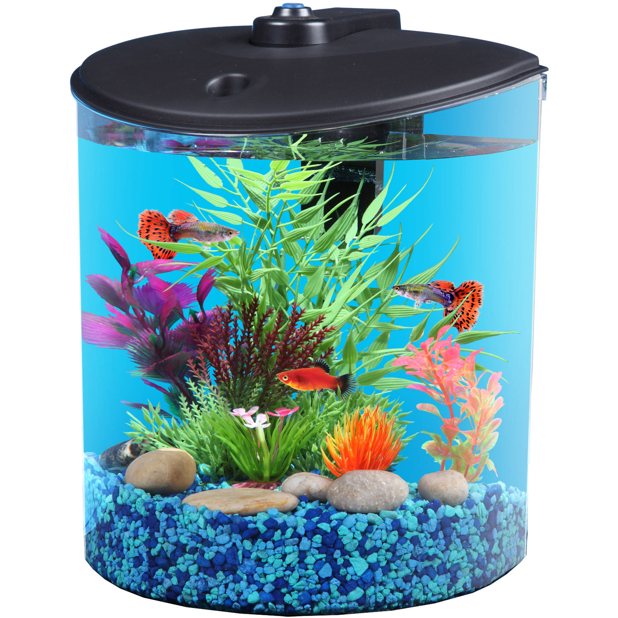 Hawkeye 1.5 gal 180' View Aquarium Kit with LED Light and Power Filter by KollerCraft (Hawkeye Intl)