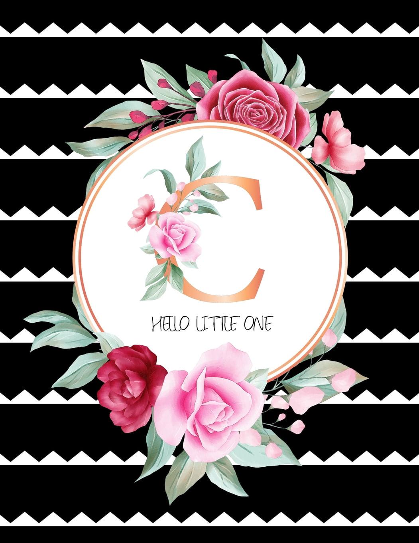 C Hello Little One: Pregnancy Tracker - Baby Shopping List ...