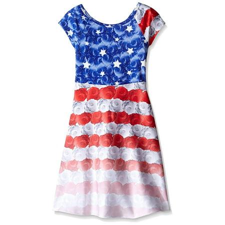 28e6faf678a Bonnie Jean Big Girls' Americana Printed Scuba Skater Dress, Blue, ...