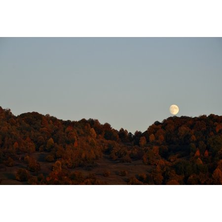 LAMINATED POSTER Moon Halloween Autumn Background Autumn Hills Poster 24x16 Adhesive Decal
