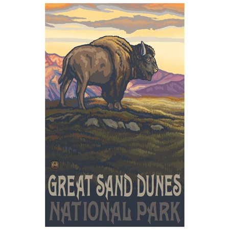 Great Sand Dunes National Park Lone Bison Side Travel Art Print Poster by Paul A. Lanquist (12