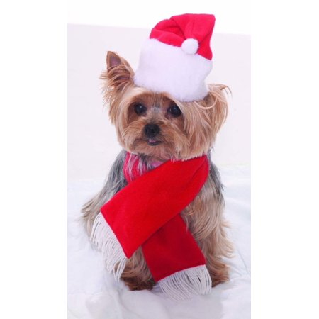 Christmas Cat Costumes (Dog Cat Santa Hat & Scarf Set Christmas Holiday Festive Costume Accessory)