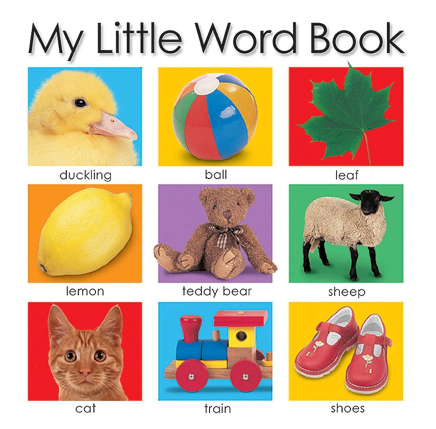 My Little Word Book (Board Book)