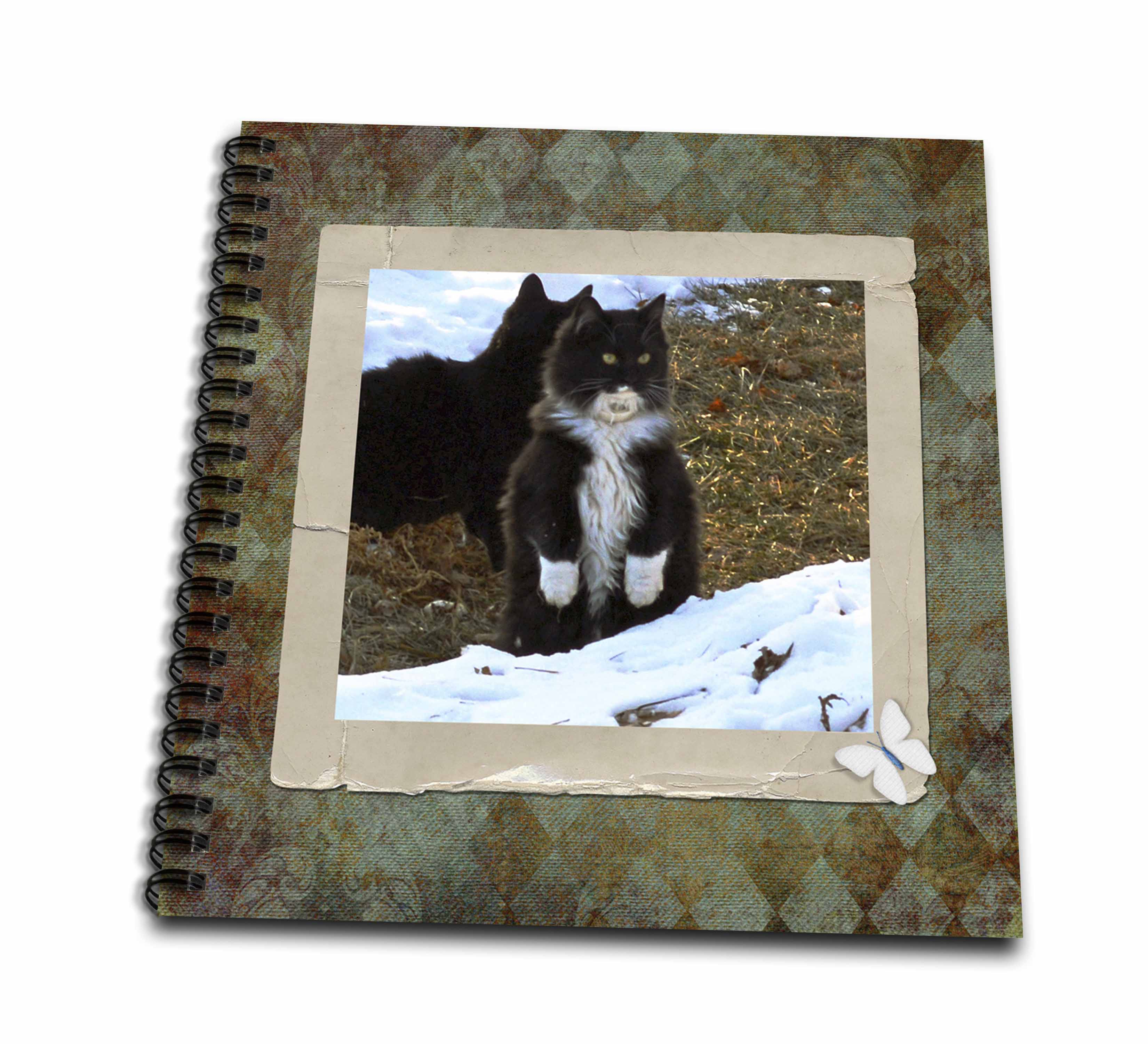 3dRose Black and White Kitten Standing on Her Back Legs in the Snow - Drawing Book, 8 by 8-inch