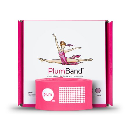 The PlumBand -  Stretch Band for Dance and Ballet - Sizes for Kids & Adults -  Improve Your Splits, Strength, and Flexibility with Stretching - Printed Instruction Booklet and Travel Bag - Pink Arm Bands