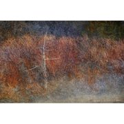 Marmont Hill Grey Green Forest Abstract Chris Vest Print On Canvas