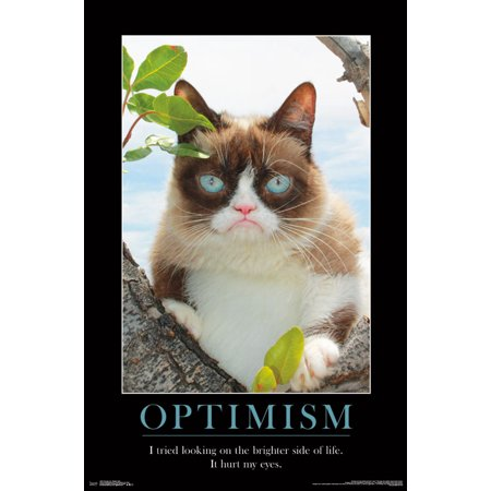 Trends International Grumpy Cat Brighter Side Wall Poster 22.375