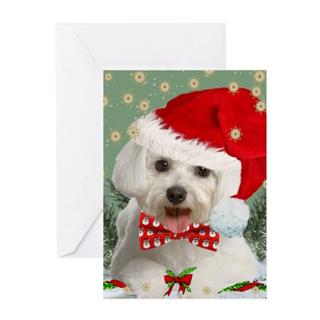 CafePress - Maltese Wish You Merry Christmas Cards Greeting Ca - Greeting Card, Blank Inside