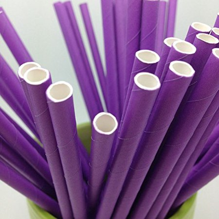 Straw Jar (Purple Paper Straws - Party DIY, Mason Jars, Baby Shower, Chevron and Polka Dots 125)