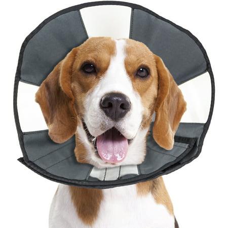Zenpet Soft Recovery Cone-Medium - image 1 of 1
