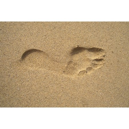 LAMINATED POSTER Footprint Tracks In The Sand Sand Poster Print 24 x 36 (Footprint Tack)