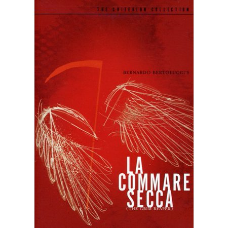 La Commare Secca (Criterion Collection) (Gabriella Collection)