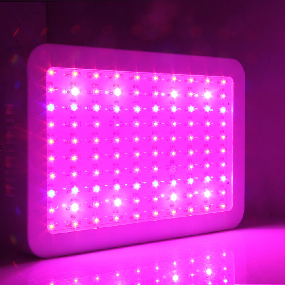UBesGoo 1000W Double Chips LED Grow Light Full Specturm for Medical Greenhouse and Indoor Plant Veg Bloom Flowering Growing (10w Leds)