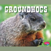 Groundhogs - Audiobook