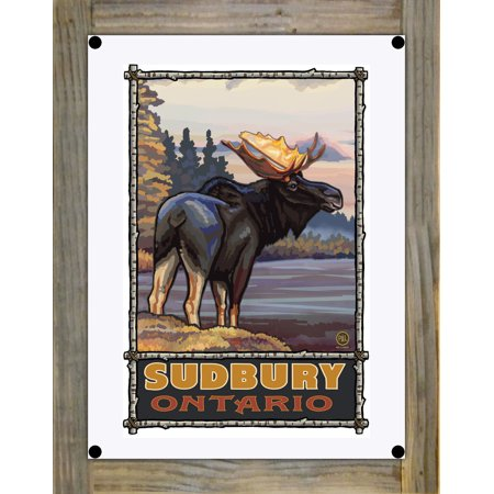 Sudbury Ontario Moose Metal Print on Reclaimed Barn Wood by Paul A La