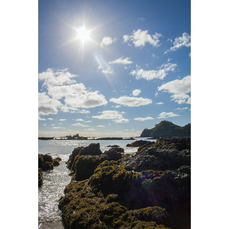 Canvas Print Pacific Sky Sand Sea Water Beach New Zealand Stretched Canvas 10 x -