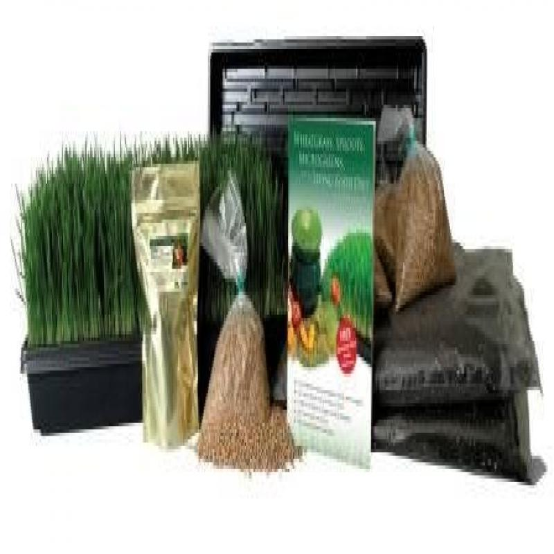 Certified Organic Wheatgrass Growing Kit - Grow & Juice Wheat Grass: Trays, Seed, Soil, Instructions, Wheatgrass Book, Trace Mineral Fertilizer & More...