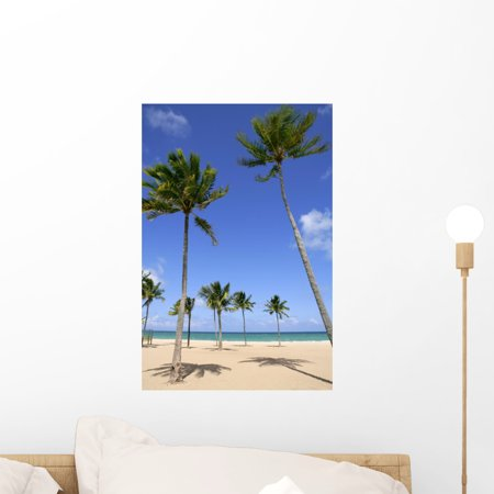 Beach Tropical Florida Day Wall Mural By Wallmonkeys L And Stick Graphic 18 In H X 12 W Wm37399