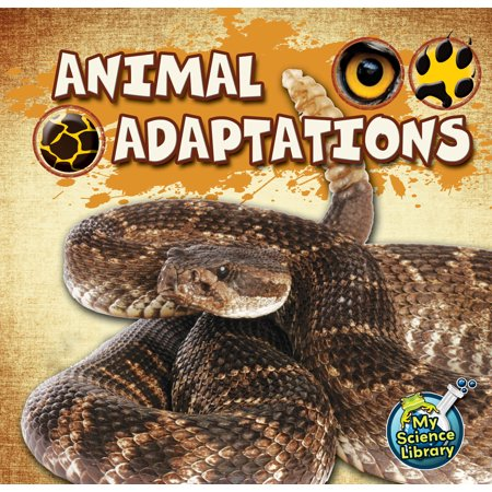 Animal Adaptations - Desert Animals Adaptations