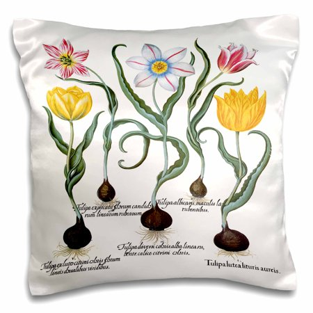 3dRose Tulips in Yellow, Early Crimson, Silver White, Blue with Yellow - Pillow Case, 16 by 16-inch