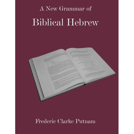 A New Grammar Of Biblical Hebrew  Paperback