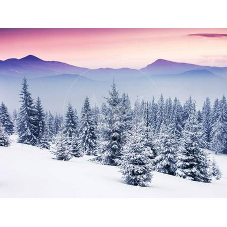 Fantastic Evening Winter Landscape Snow Sunset Christmas Scene Print Wall Art By Leonid Tit ()