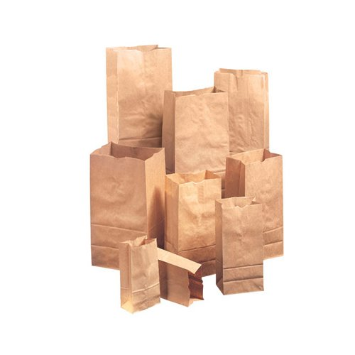 General 4 Kraft Paper Bag in Brown (Set of 2)