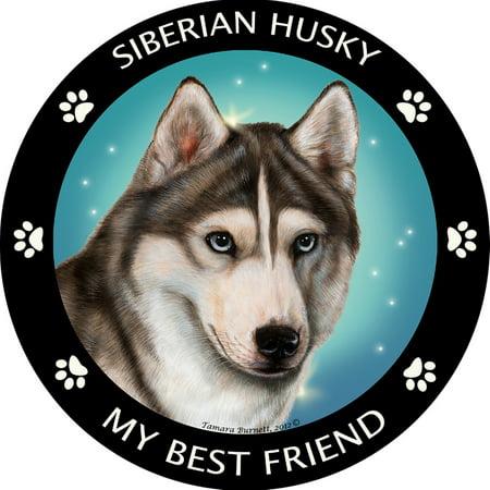 Siberian Husky My Best Friend Magnet