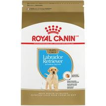 Dog Food: Royal Canin Labrador Retriever