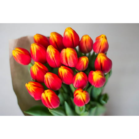 Canvas Print Bouquet Tulips Women's Holiday Multi Color Bright Stretched Canvas 10 x 14