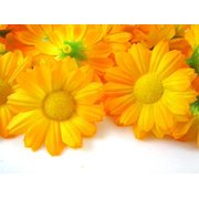 """IcRAFY 24 Daisy Silk Head Orange color Size 1.5"""" Artificial Flowers Heads Fabric Floral Supplies Wholesale Lot for Wedding Flowers Accessories Make Bridal Hair clips Headbands Dress"""