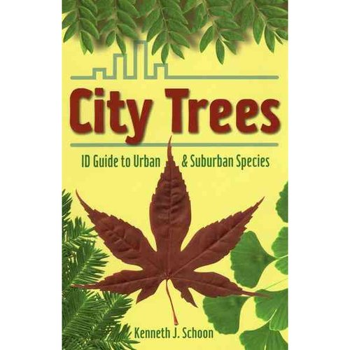 City Trees: ID Guide to Urban and Suburban Species