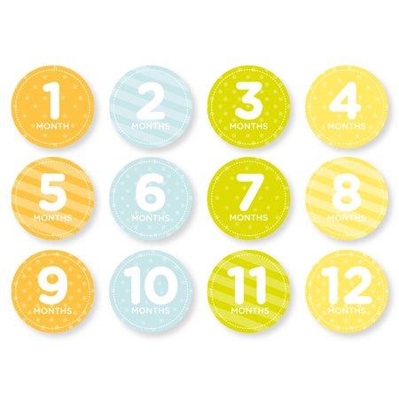 Tiny Ideas Baby Milestone Monthly Belly Stickers, Neutral (Baby Theme Ideas)