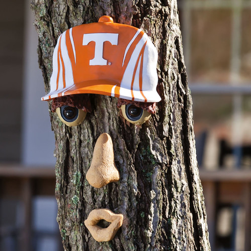 Team Sports America NCAA Forest Face