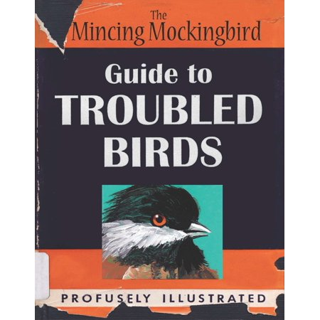 The Mincing Mockingbird Guide to Troubled (Mockingbird Dallas Texas)