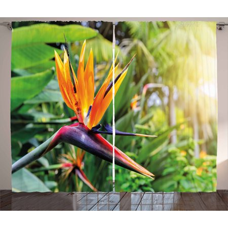 Plant Curtains 2 Panels Set, Close-up Image of Strelitzia Reginae Bird of Paradise Flower Madeira Island Portugal, Window Drapes for Living Room Bedroom, 108W X 63L Inches, Multicolor, by Ambesonne